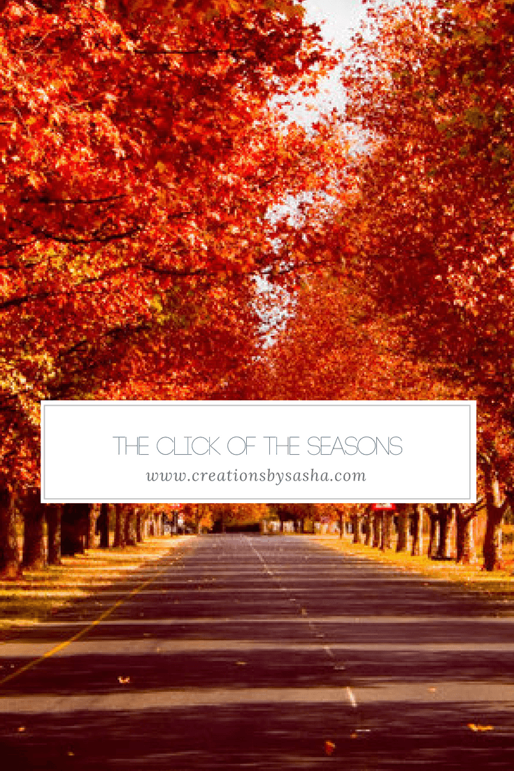 The Click of the Seasons - www.by-sasha.com